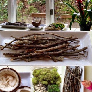 Spring Nature Table from naturalbeachliving.com.