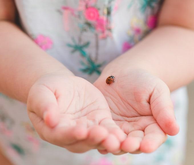 What is Montessori Preschool