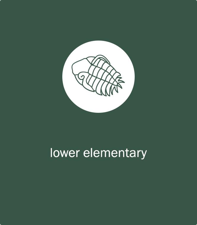 Montessori Lower Elementary